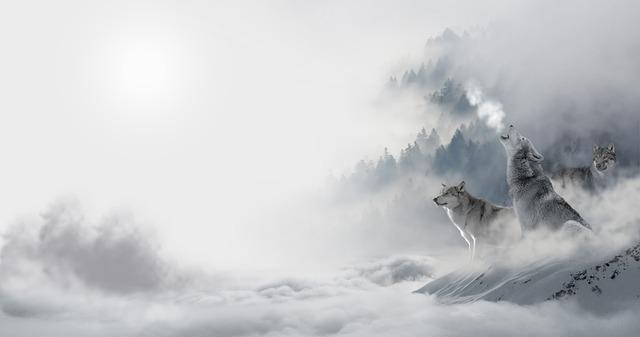 金融機関の人は「羊の皮をかぶった狼」だと認識することが大切。